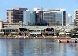 Baltimore Crab + C25K Week 4Updates