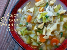 1 asian chicken noodle soup with wontons