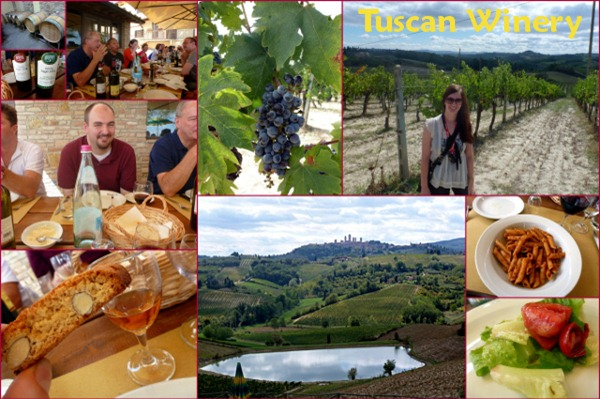 florence Blog Day 4 Part 2 - winery