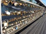 Photo of the Week-Pont des Arts' LoveLocks