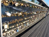 Photo of the Week-Pont des Arts' Love Locks